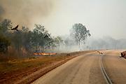 Bushfire set to make seeds spring along Savanah Highway in the Kimberleys region.