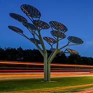 Zonnebomen langs de Weg van de Toekomst