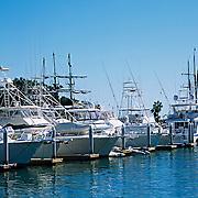 Marina of Cabo San Lucas. Baja California Sur, Mexico.