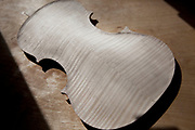 Back of a violin. Violins being made at viloin an cello maker, Rod Ward's studio in Guilden Morden, Hertfordshire, UK. This highly skilled craft involves the process of making from raw wood to final instrument. All hand crafted with specialist tools and care for detail.