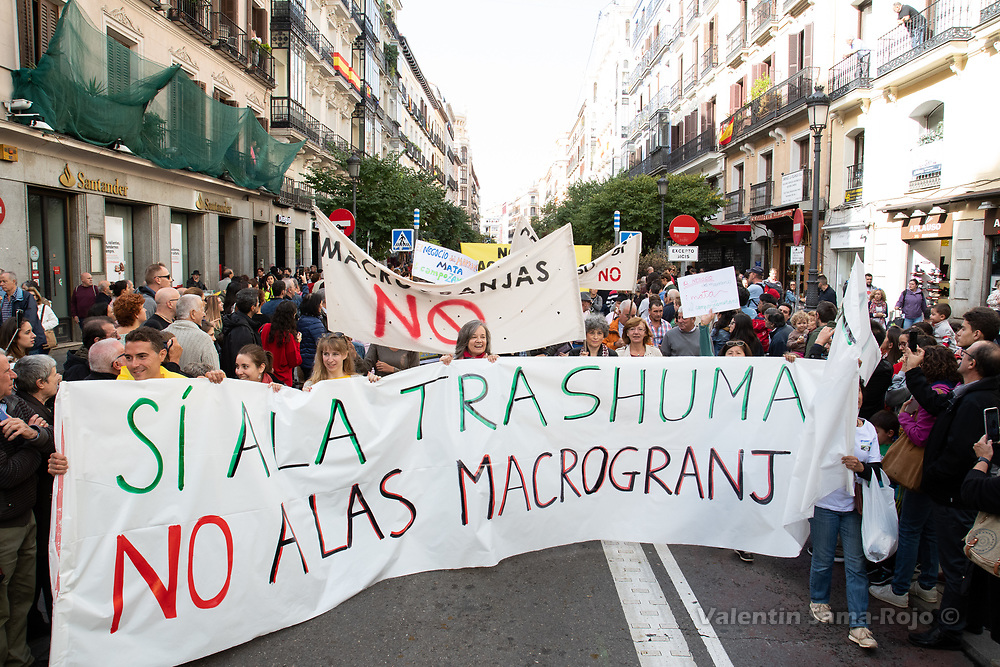 Madrid, Spain. 21st October, 2018. People protesting against factory farms and asking for traditional traditional farming during transhumance celebrations in Madrid. © Valentin Sama-Rojo