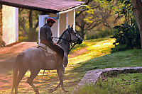 A gaucho rides the horses out of the stable in the morning glow of sunrise