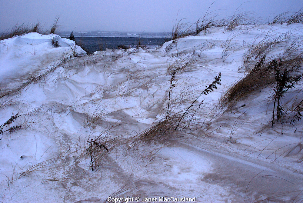 A blizzard wind mixes sand and snow drifts like flower and sugar.