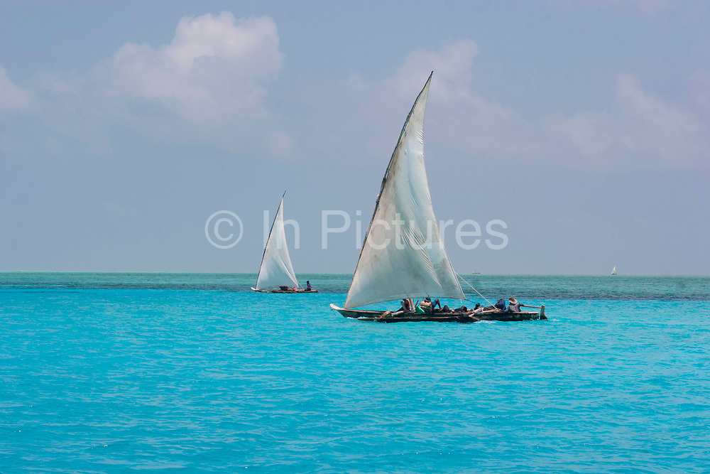 Traditional Dhow boats sail off the reef at Mnemba in the azure sea on 12th December 2008 in Zanzibar, Tanzania. Zanzibar is a small island just off the coast of the Tanzanian mainland in the Indian Ocean. In part due to its name, Zanzibar is a travel destination of mystical reputation, known for its incredible sealife on its many reefs, the powder white coral sand beaches and the traditional cultivation of spices.
