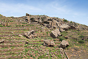 The jumbled rocks and ancient terraces of Pantelleria reveal an ancient tradition of winemaking and grape-growing for raisin production.
