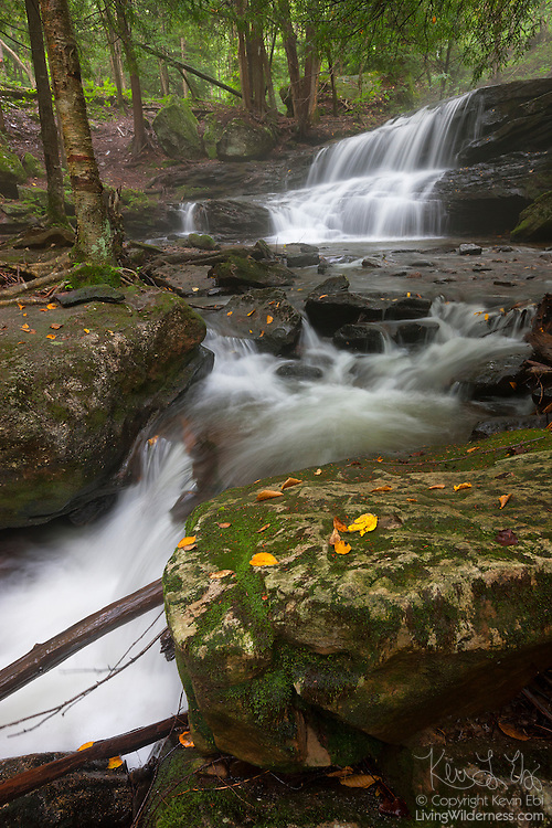 Logan Run drops about 20 feet (7 meters) at Logan Falls, located in the Allegheny National Forest near Balltown, Pennsylvania.