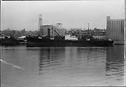 "Ackroyd 06399-1. ""Balfour Guthrie. S. S. Werrastein at Irving dock. October 18, 1955"" (showing a bit of Albina Engine & Machine dock on left. 5x7"")"