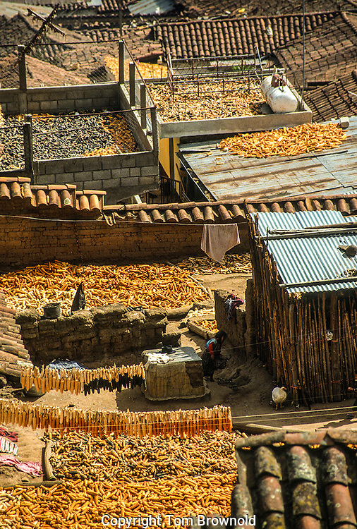 Corn drying on the village roof tops