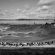 2015 U.S. Open was held at <br /> Chambers Bay in University Place, WA. A sprawling, hilly links style course created a challenge for spectators but also provided beautiful views of Puget Sound.