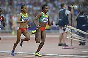 Olympic Stadium, Stratford, London, United Kingdom<br /> <br /> Description:<br /> <br /> 2012 London Olympic, Athletics, <br /> . <br /> <br /> 20:20:17  Friday  10/08/2012 [Mandatory Credit: Peter Spurrier/Intersport Images]