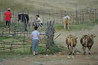 Village-life. Lake Prespa National Park, Albania June 2009