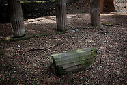 20130404_NYT_Pompei