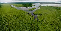 Boca Grande river mouth and estuary lined with mangroves.<br /> Coiba Island<br /> Coiba National Park<br /> Panama