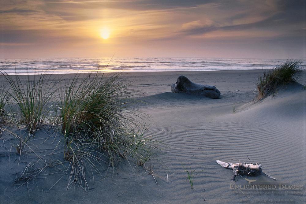 Sunset at Gold Bluffs Beach, Prairie Creek Redwoods State Park, Humboldt County, CALIFORNIA