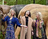 Donna Air, Amy Jackson and Joanna Lumley  taking part The Elephant Family's CoExistence campaign  exhibition featuring elephant sculptures crossing The Mall  london  May 15, 2021,photo by Krisztian  Elek
