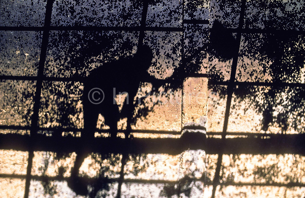 """A cocoa worker spreads beans across the wire mesh of an """"estufa"""", an open air drying """"oven"""", Bahia, Brazil."""