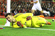 Swansea City Goalkeeper Lukasz Fabiaski watches the ball go wide of his goal. Barclays Premier League match, Liverpool v Swansea City at the Anfield stadium in Liverpool, Merseyside on Sunday 29th November 2015.<br /> pic by Chris Stading, Andrew Orchard sports photography.