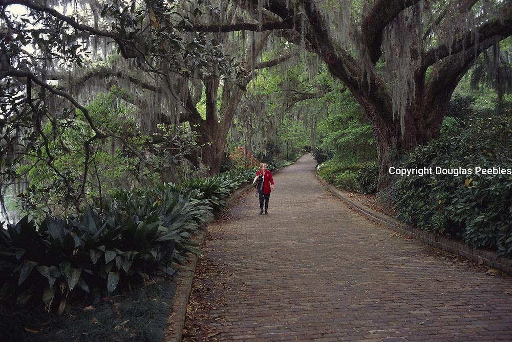 Maclay Gardens, Tallahassee, Florida<br />