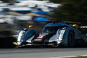 September 30-October 1, 2011: Petit Le Mans. 2 Tom Kristensen, Allan McNish, Dindo Capello, Audi R18, Audi Sport Team Joest