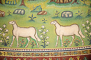 Mosaics of sheep on the Apse of the 6th century AD Byzantine Roman Mosaics of the Basilica of Sant'Apollinare in Classe, Ravenna Italy .<br /> <br /> Visit our BYZANTINE MOSAIC PHOTO COLLECTION for more   photos  to download or buy as prints https://funkystock.photoshelter.com/gallery/Byzantine-Eastern-Roman-Style-Mosaics-Pictures-Images/G0000NvKCna.AoH4/3/C0000YpKXiAHnG2k<br /> <br /> If you prefer to buy from our ALAMY PHOTO LIBRARY  Collection visit : https://www.alamy.com/portfolio/paul-williams-funkystock/san-apollinaire-classe-ravenna.html