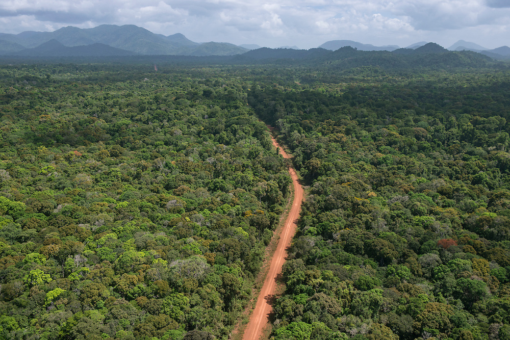 Dirt Road through rainforest<br /> Iwokrama <br /> Rupununi<br /> GUYANA<br /> South America