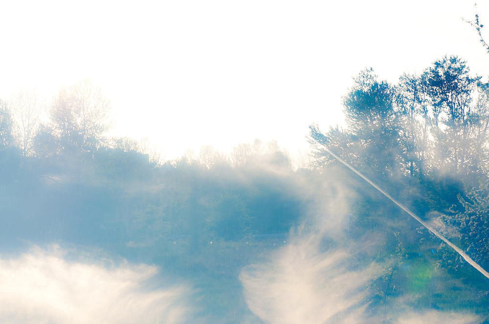 A Multiple Exposure photograph of clouds and trees at the University of Washington's Union Bay Natural Area in Seattle.
