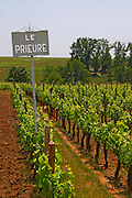 A white sign in the vineyard saying Chateau Le Prieure Saint Emilion Bordeaux Gironde Aquitaine France