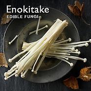 Food Pictures of Fresh Enokitake, Enodake or Enoki mushrooms. Food Photos, Images.
