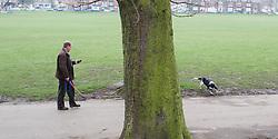 Dog walker in Endcliffe Park, Shefield