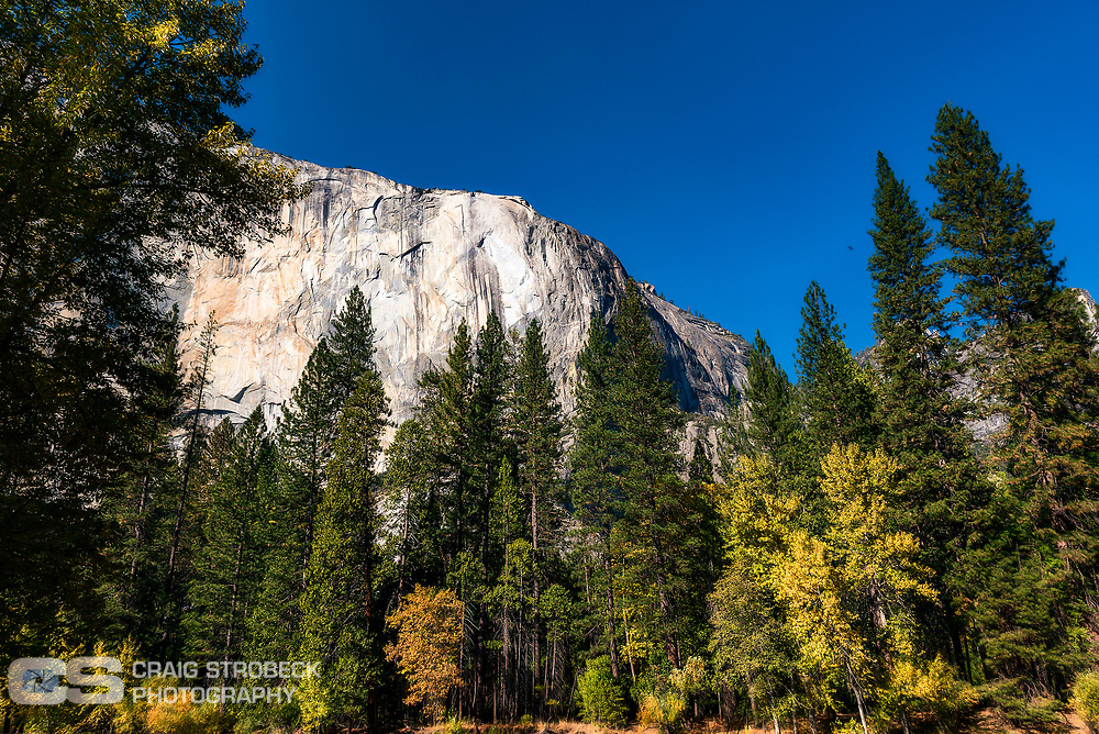 Yosemite photo trip November 2020. Yosemite Valley