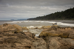 Anglers Fishing For Perch From Eroded Sandstone Sea Stacks, Kalaloch Beach 4, Olympic National Park, Washington, US