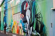 Street art, Vila Madalena neighbourhood, Sao Paulo, Brazil.