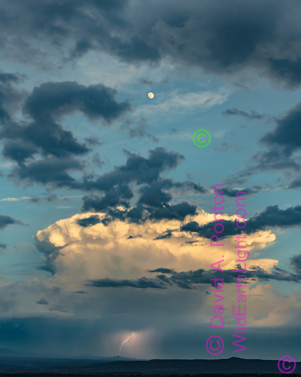 Moon above thunderhead with lightning in the New Mexico landscape in the northern Rio Grande Valley, America, © David A. Ponton