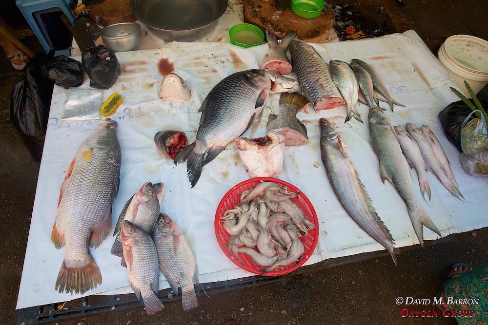 Fish For Sale, Gyee Zai Market