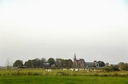 Nederland, Persingen, 23-09-2011 Koeien in een weiland tegen de achtergrond van het kerkje van Persingen. Persingen is een dorp in de gemeente Ubbergen,  provincie Gelderland. Het ligt in de Ooijpolder. Met 34 woningen wordt het beschouwd als het kleinste dorp van Nederland. Het dorpje heeft een laat-middeleeuws gotisch kerkje, dat dienst doet als tentoonstellingsruimte en trouwlocatie. In het verleden is Persingen groter geweest, maar het dorp was kwetsbaar voor overstromingen en in 1809 werd het vrijwel geheel verzwolgen door de Waal. Het resterende Persingen ligt op een donk, een rivierduin.Foto: Flip Franssen/Hollandse Hoogte