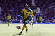 Nathan Redmond of Norwich City in action. Barclays Premier League match, Everton v Norwich City at Goodison Park in Liverpool on Sunday 15th May 2016.<br /> pic by Chris Stading, Andrew Orchard sports photography.