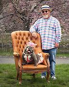Bulldog on the Boston Esplanade. Kentucky dog day.