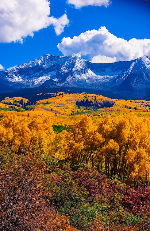 Fall color, Kebler Pass, near Crested Butte, Colorado USA.