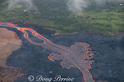 Aerial view of incandescent lava river draining from Fissure 8 of Kilauea Volcano east rift zone near the town of Pahoa. The river of lava runs downhill through agricultural lots in Kapoho, Puna District, Hawaii Island ( the Big Island ), Hawaiian Islands, U.S.A.; land on the upwind side of the river of lava is lush and green, while properties on the downwind side have been scorched by sulfur dioxide and other volcanic gases.