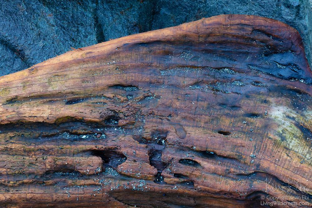 Weathered driftwood rests against a large beach rock in Marina Beach Park, Edmonds, Washington.