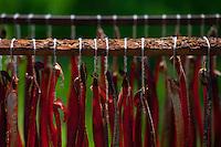 Smoked salmon sticks drying on a rack, Kodiak Island, Alaska