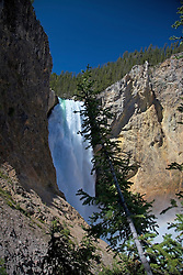 Lower Yellowstone Falls, from Uncle Tom's Trail, Yellowstone National Park