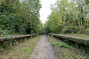 Parkland walk on the 15th October 2019 in London in the United Kingdom. Parkland Walk follows the course of the old railway that ran between Finsbury Park and Alexandra Palace.