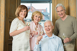 Portrait of friends holding glasses of sparkling wine, smiling