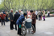 An elderly man inn a wheelchair is greeted by his friends at Fuxing Park in Shanghai, China, on Sunday, April 10, 2016. An rapidly ageing demographic is one of the main challenges facing China as society is greying before the country became a developed nation.