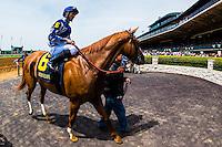 Jockey Joel Rosario on Mr. Canada, Keeneland Racecourse, Lexington, Kentucky USA.