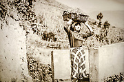 Historic photograph of grape harvest in Manarola, Cinque Terre, Liguria, Italy