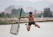 Duck catching in China