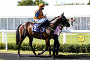 Flying Focus ridden by George Rooke trained by Milton Harris - Mandatory by-line: Robbie Stephenson/JMP - 22/07/2020 - HORSE RACING - Bath Racecoure - Bath, England - Bath Races