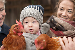 Family with chicken birds in poultry farm, Bavaria, Germany